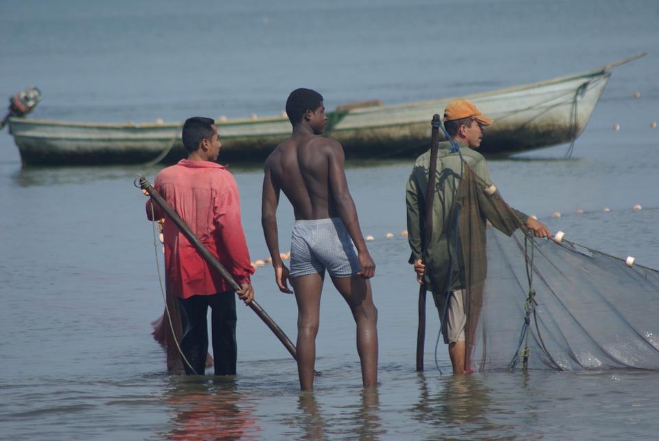 fishing-785162_960_720.jpg