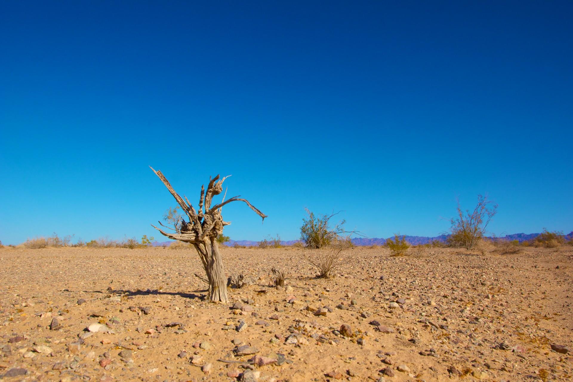 Klimaatverandering leidt nu al tot hogere sterftecijfers en meer geweld