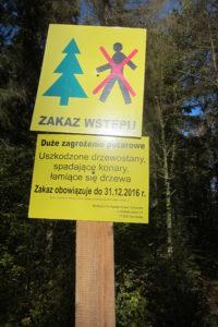 089-Om-pottenkijkers-uit-het-bos-te-houden-heeft-staatsbosbeheer-toegang-tot-het-bos-verboden-wegens-brandgevaar-tot-eind-2016-het-bos-is-alleen-kletsnat
