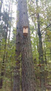 099-Tja-als-je-alle-boomholtes-weg-haalt-heb-je-nestkastjes-nodig-houthakkers-doen-alsof-ze-iets-met-natuur-hebbe