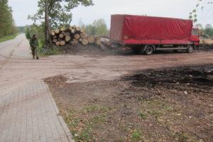 102-Bij-de-houtzagerij-in-Lipiny-liggen-grote-oude-stammen-klaar-om-verzaagd-te-worden