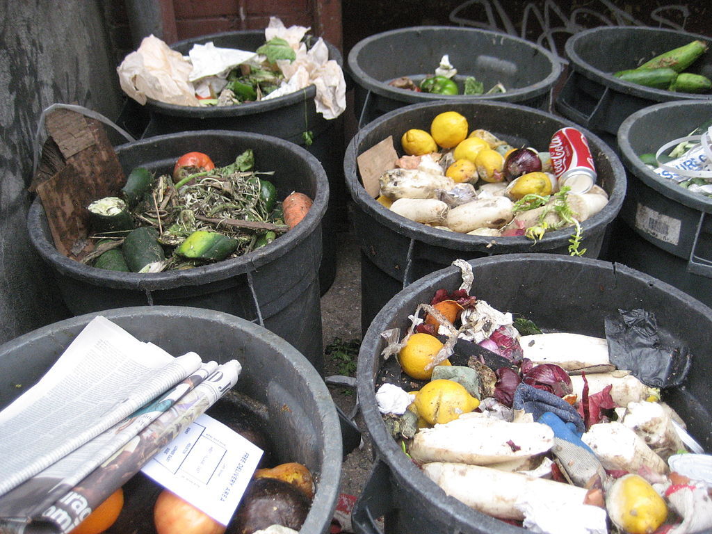 household_food_trash_ny.jpg