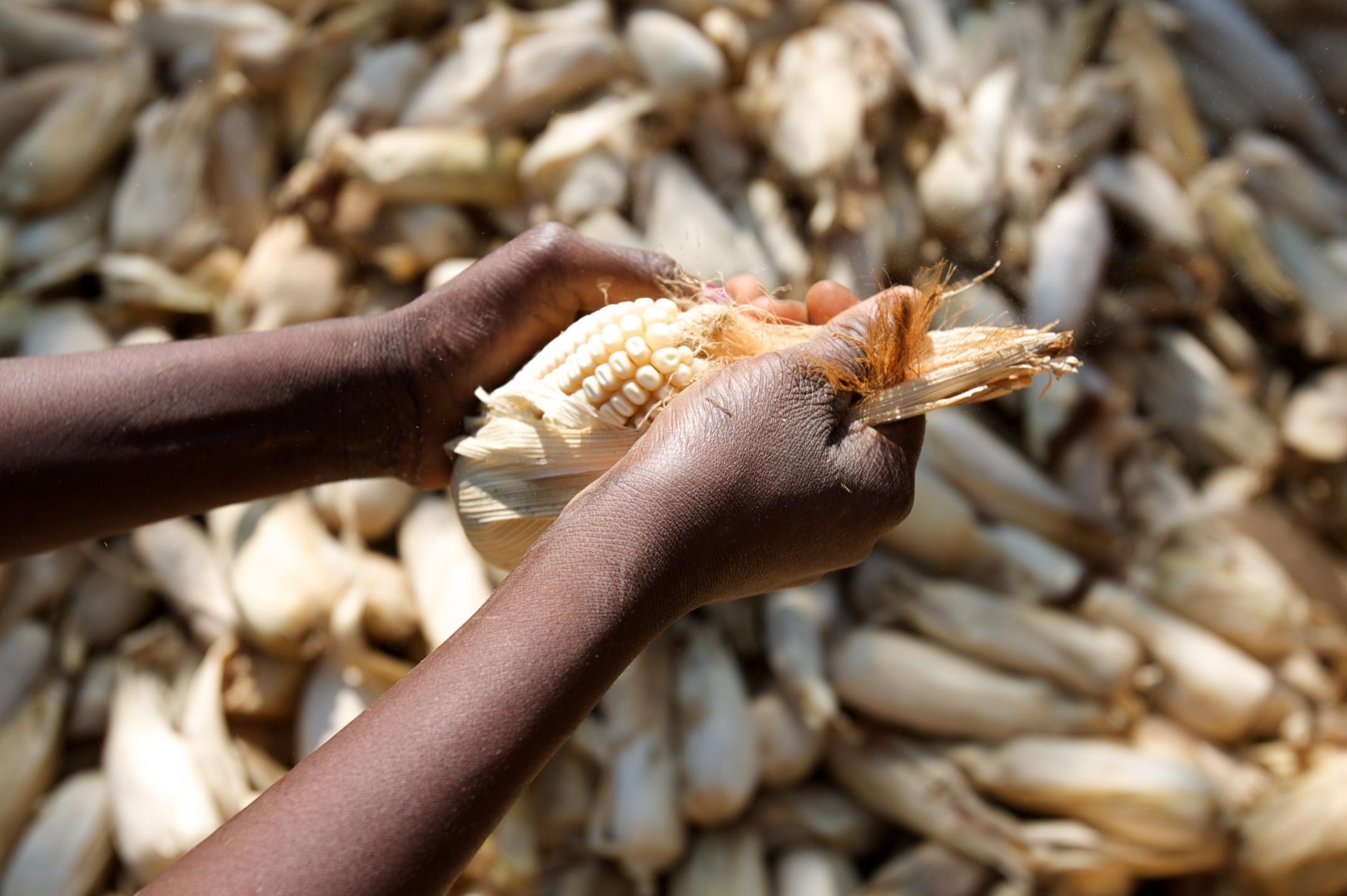 africa_food_security_11_10665081134.jpg