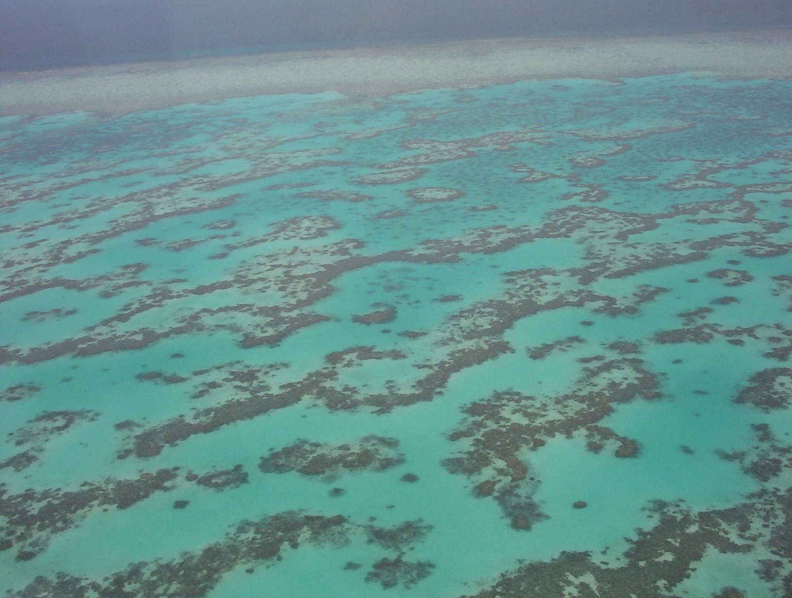 part_of_great_barrier_reef_from_helecopter.jpg