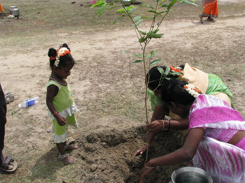 800px-india_-_kids_-_planting_trees_for_her_future_4040009491.jpg