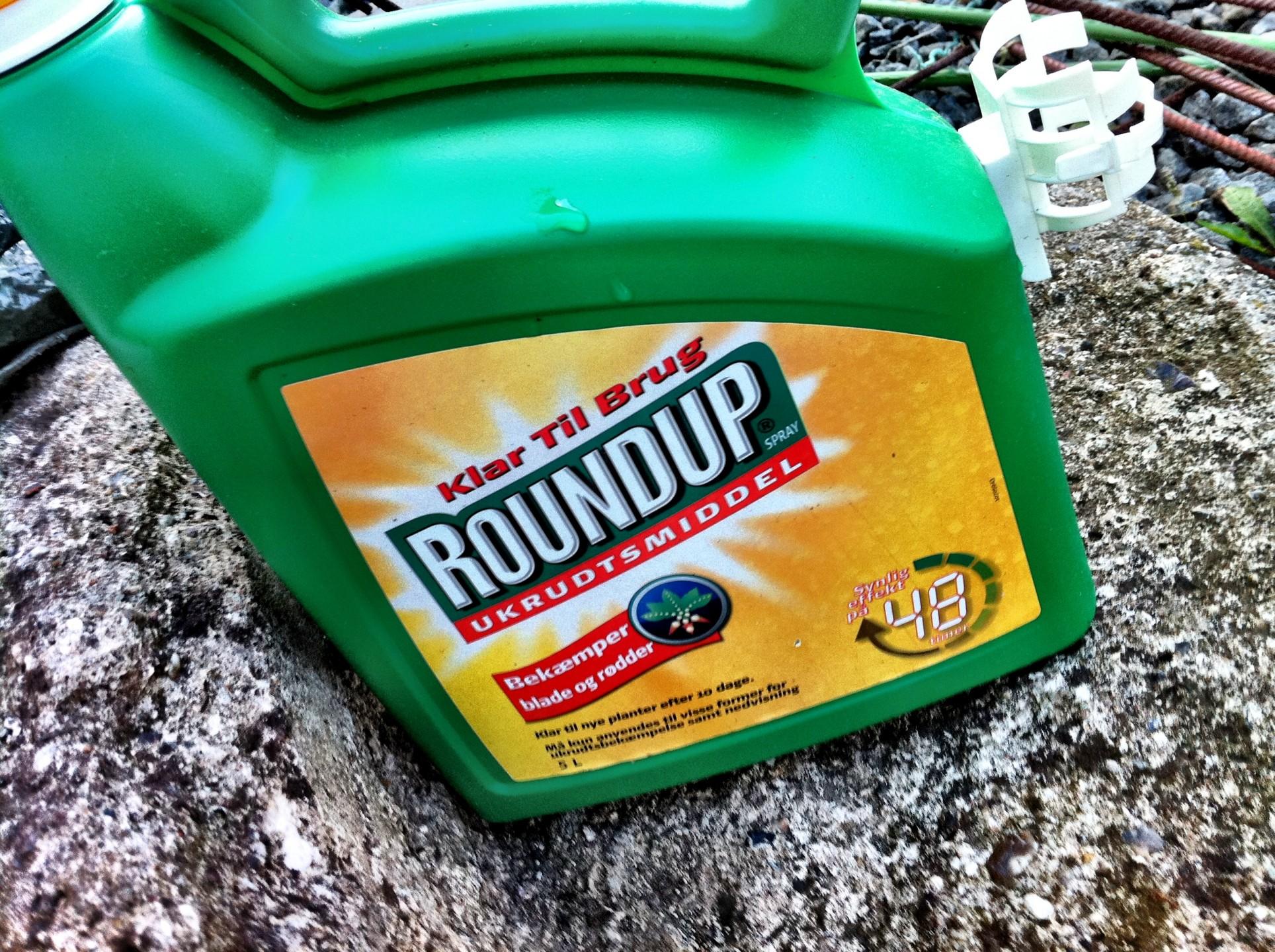 2.-RoundUp-header