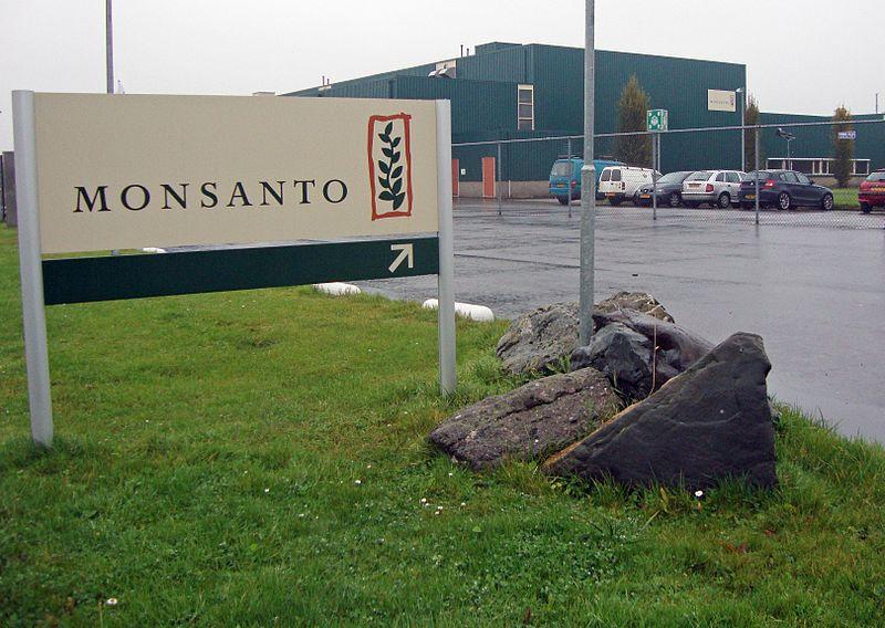 800px-Monsanto-vestiging_Enkhuizen