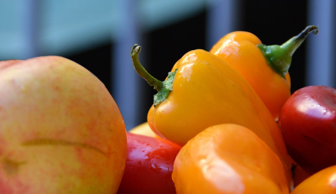 agriculture-bright-close-up-158040-1