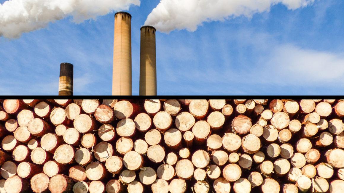 biomassa heeft een hoge co2-uitstoot
