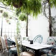 B&H Greenhouse