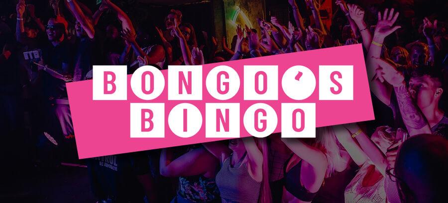 Bongo's Bingo livestream