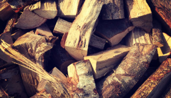 Hardwood Logs Category Image