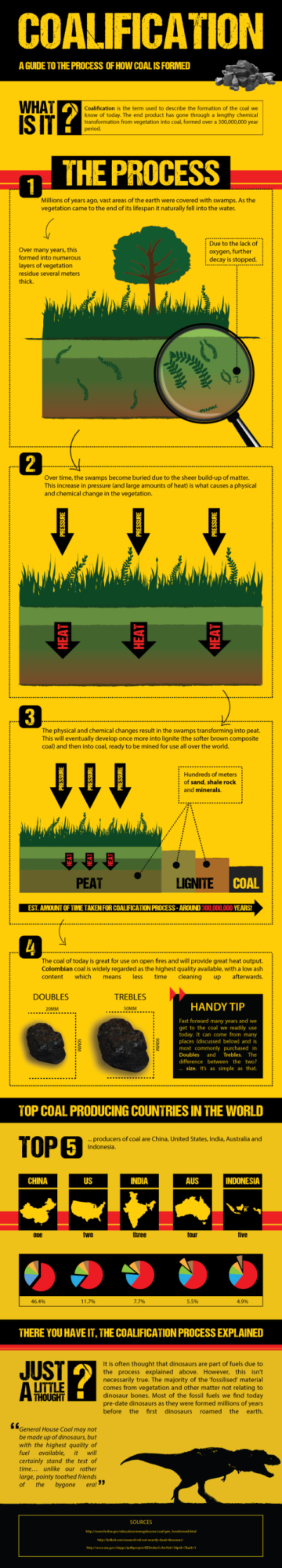 Coalification Infographic
