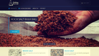 Online Rocksalt Launch New Website Tn