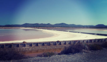 Salt Pan In Sardinia