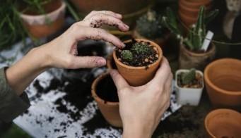 Gardening Thumbnail