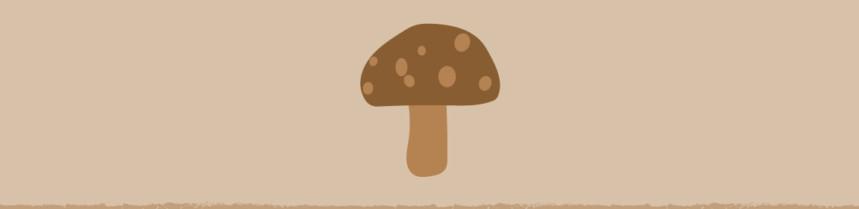 Mushroom Compost Blog