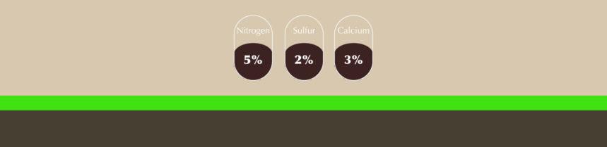 Nutrients in soil