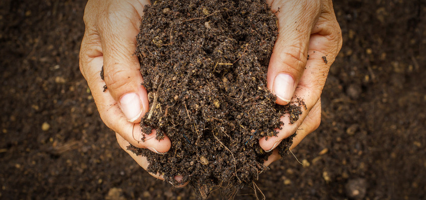 Topsoil Buying Guide