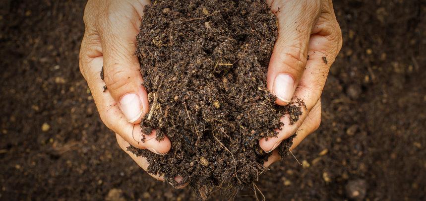 Topsoil Buying Guide