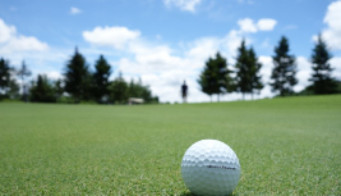 Golf Turf 27