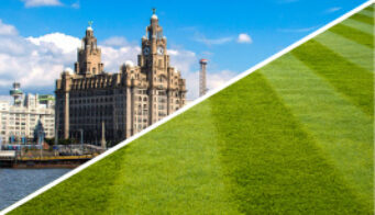 Turf Supplier Liverpool 11