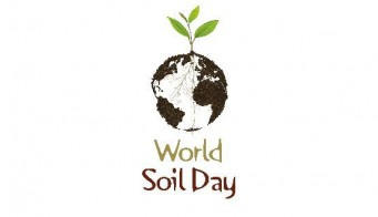 Soil Day Logo