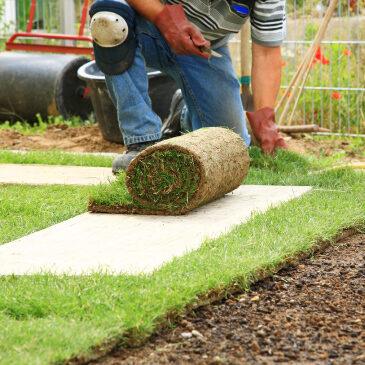 London  Turf  Supplier  Page