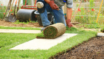 Man Laying Turf