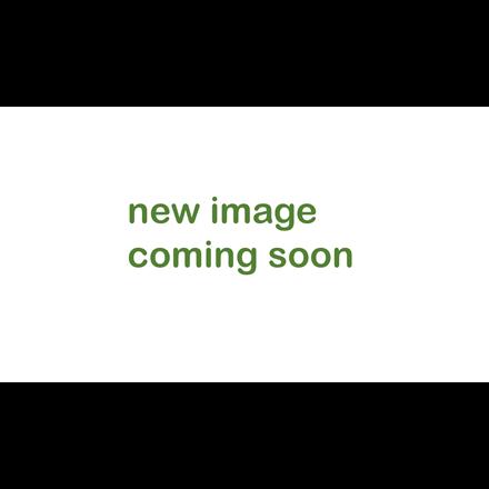 gloTherapeutics Conditioning Mist - 118ml