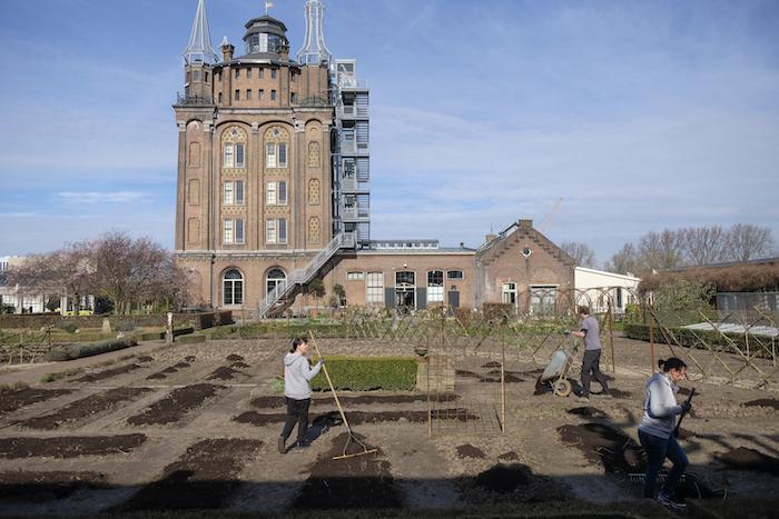 Extra handen voor de tuinploeg: kelners en koks helpen met het opbrengen van compost