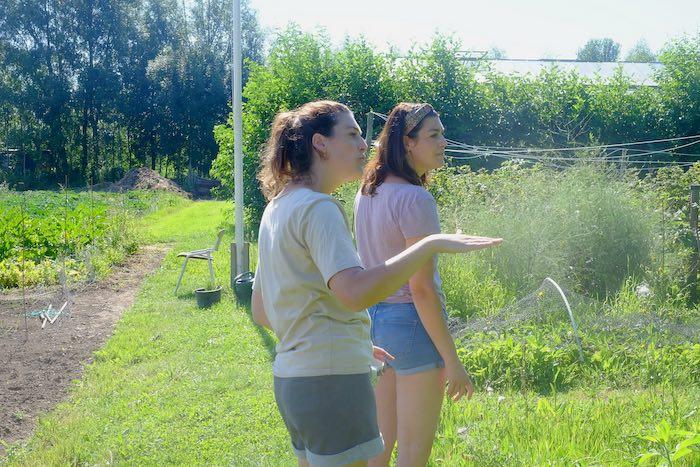 Hanna (l) met haar tweelingzus Eefje (van Villa Augustus) op het land van Beversoord