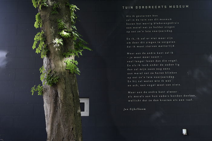 'Tuin van het Dordrechts Museum' van Jan Eijkelboom op de muur van het gebouw
