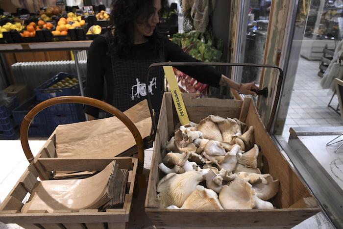 Verse oesterzwammen van Kwekersgilde in de markt van Villa Augustus