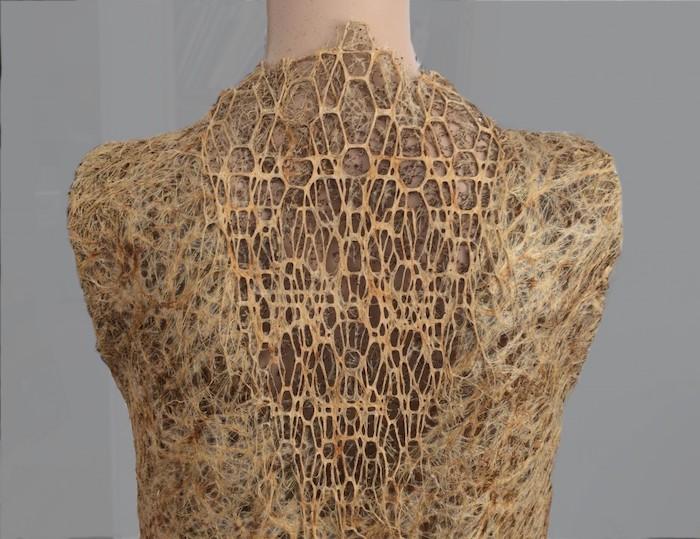 Rugpand van de jurk Rootbound