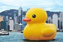 Rubber Duck van Florentijn Hofman, foto ARR
