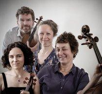 Narratio Quartet – Foto: Marten Root