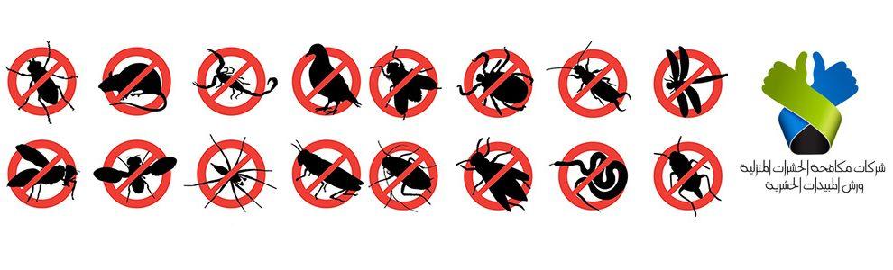 مكافحة الحشرات المنزلية