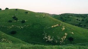 قرية كفر راكب في محافظة اربد