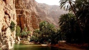 ولايات محافظة جنوب الشرقية سلطنة عمان