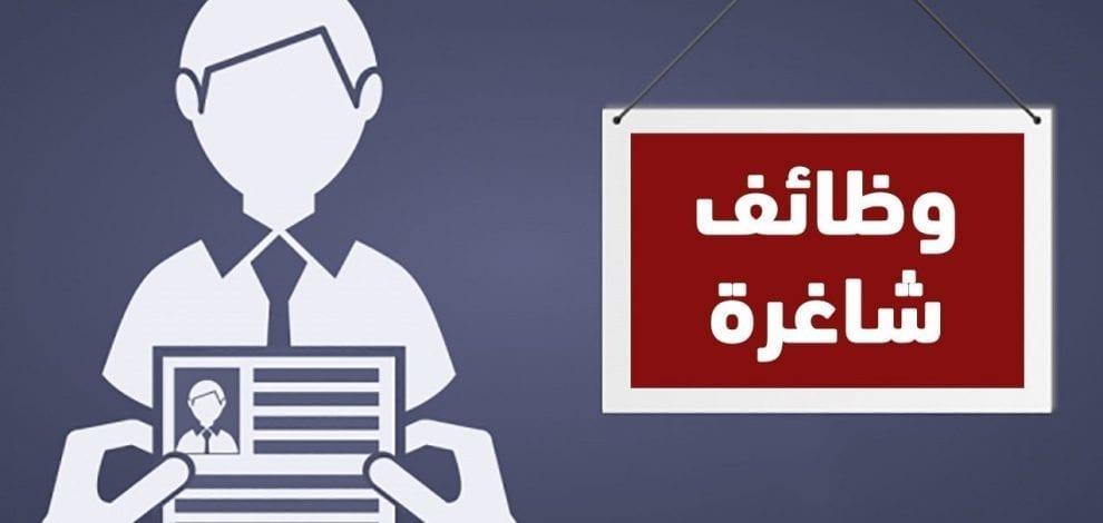 أكثر وظائف شاغرة في الكويت