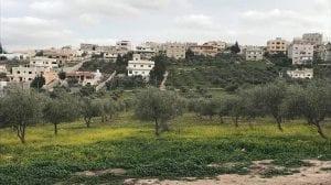 حي الورود في محافظة إربد