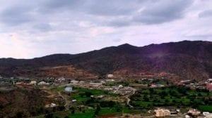 محافظة غامد الزناد