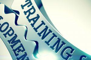 أنواع مجالات التدريب