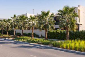 مجمع أكويا فريش في منطقة دبي لاند
