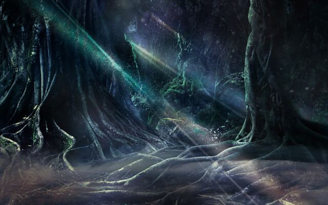 Light streams through a mysterious and magical looking forest scene with winding and moss covered tree roots