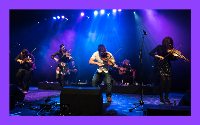 Four musicians play the fiddle together on a blue lit stage