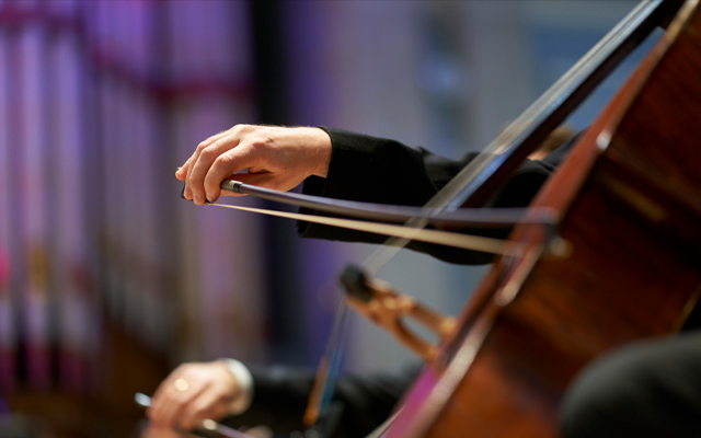 Close-up of a musician's hand holding a bow