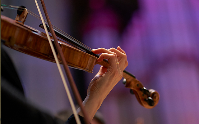 Close up of a musician playing a string instrument