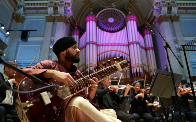 Man plays a sitar